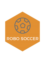 ROBOSOCCER Muffakham Jah College of Engineering and Technology, Hyderabad