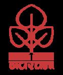 Navrachana University